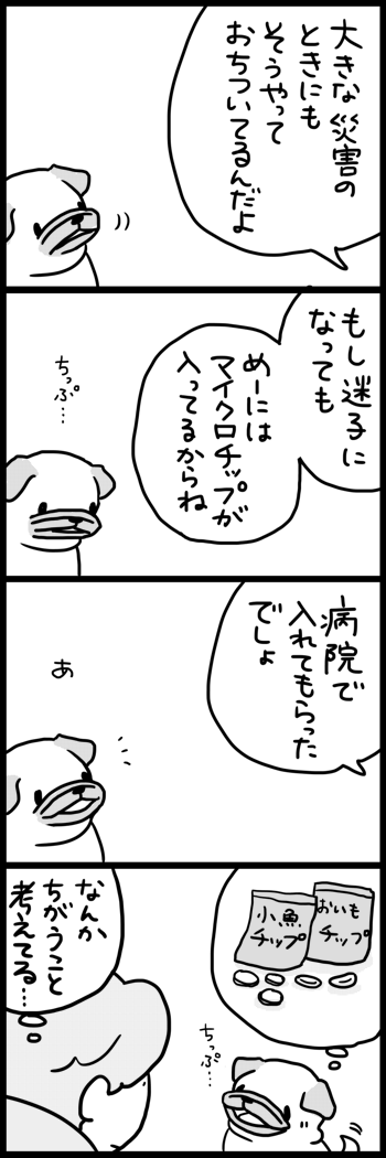 t397備える2
