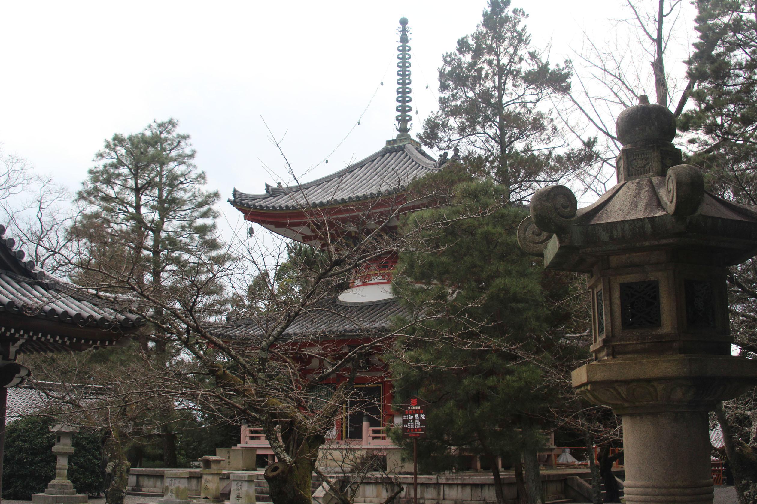 kyoto20170103010.jpg