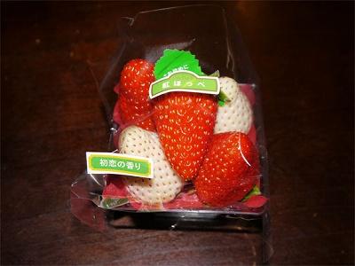 白いイチゴ2
