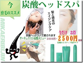 2017育毛メニューキリスト