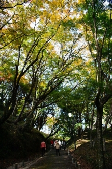 用作公園 (3)