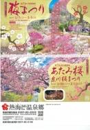 熱海桜20170118-09