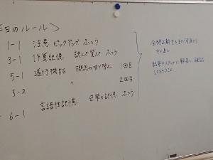 005 (300x225)