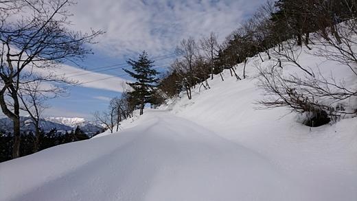 20170129-12.jpg