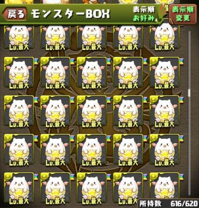 03_baby_tamadra_stock.jpg