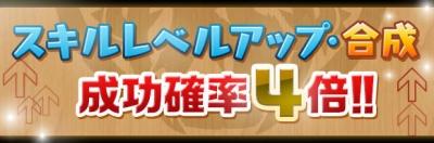 skill_seikou4x_20170112154553b71.jpg