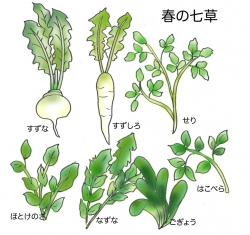 nanakusa(1).jpg