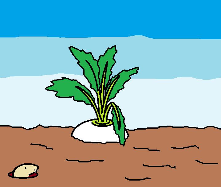 356つちのこ生鮮野菜高騰中1