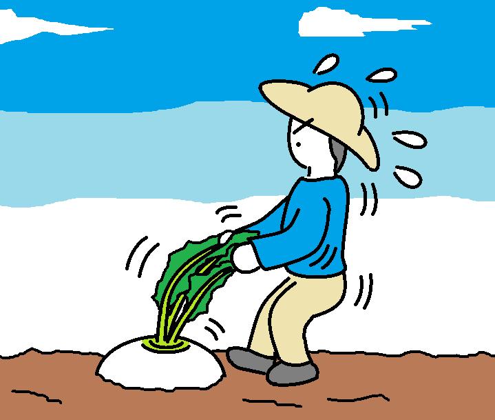356つちのこ生鮮野菜高騰中3
