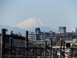 20161202三鷹跨線橋からの富士山2