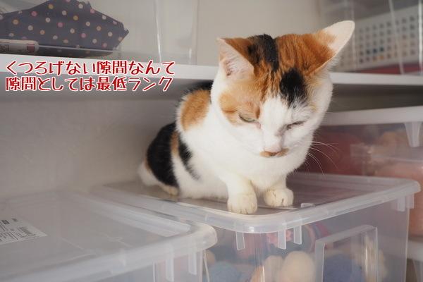 4隙間・JPG