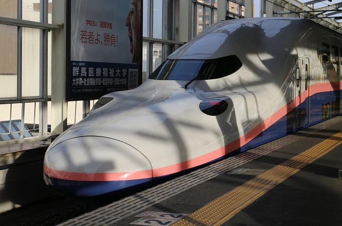 朱鷺色新幹線 29.1.21
