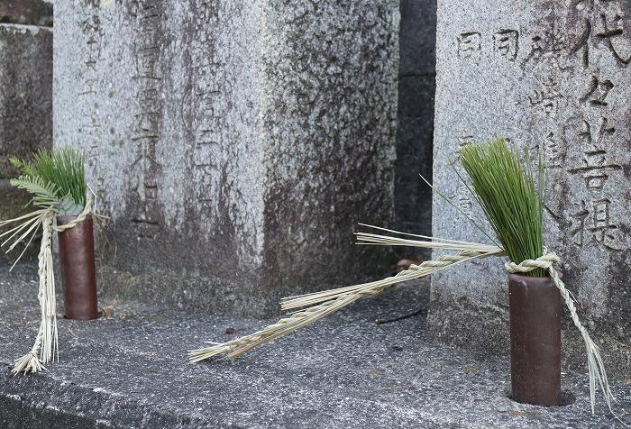 76番かな? 松と注連縄飾り 28.12.31