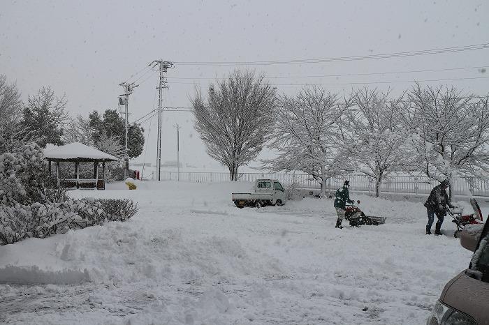 上野が丘公民館雪除け 29.1.21
