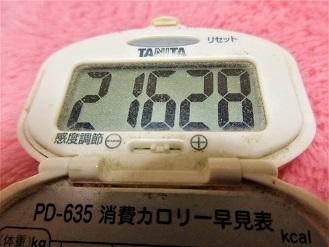 161230-291歩数計(S)