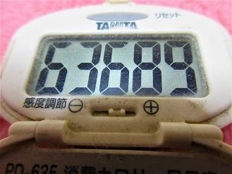 170102-210歩数計(S)