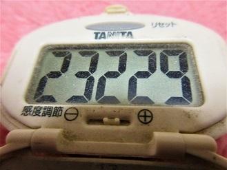 170107-291歩数計(S)
