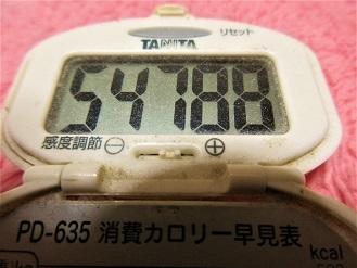 170108-291歩数計(S)