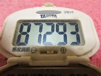 170109-291歩数計(S)