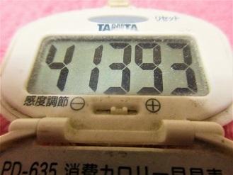 170114-291歩数計(S)