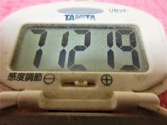 170115-291歩数計(S)