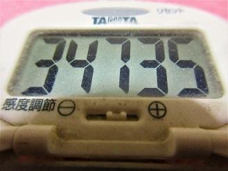 170121-291歩数計(S)