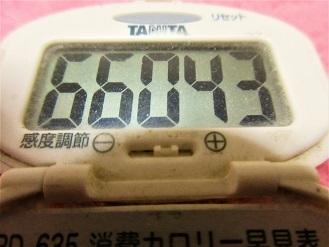 170122-291歩数計(S)