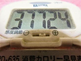 170126-291歩数計(S)