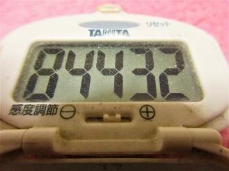 170127-291歩数計(S)