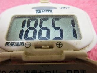 170128-291歩数計(S)
