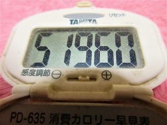 170129-291歩数計(S)