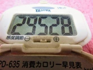 170131-291歩数計(S)