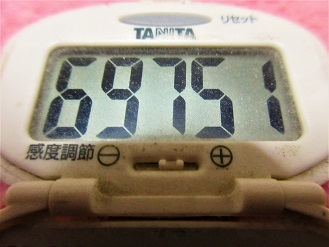 170201-291歩数計(S)