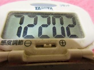170205-291歩数計(S)