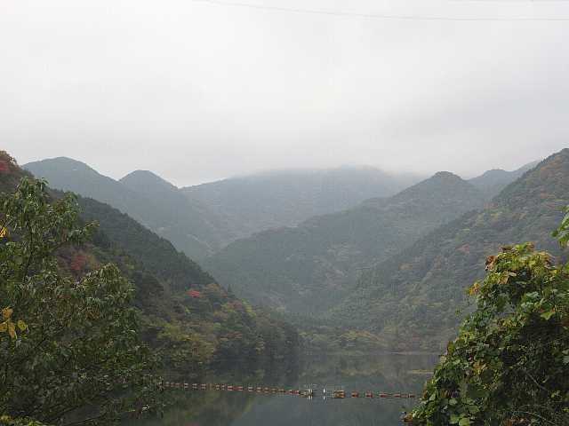 IMG6199JPG福智山山頂は雲の中