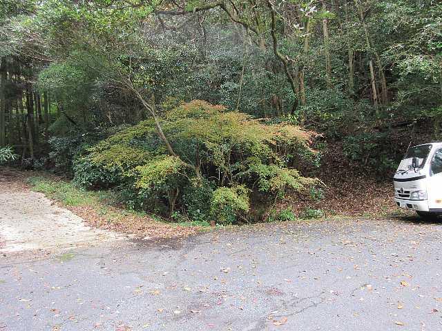 IMG6264JPGコンクリート作業道の左に鉄塔点検道階段