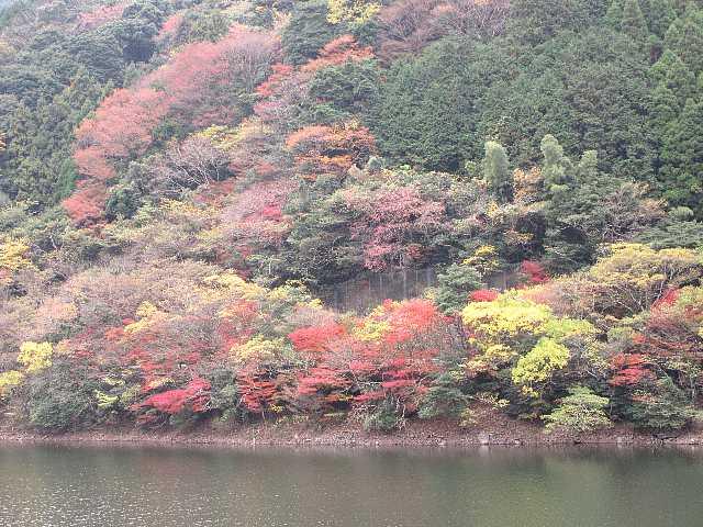 IMG6269JPG湖面と紅葉