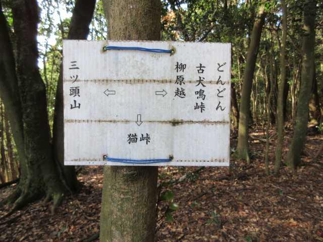 IMG6441JPG稜線の標識です