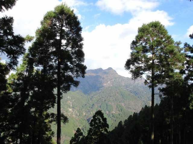 IMG6514JPG樹間に英彦山が見える