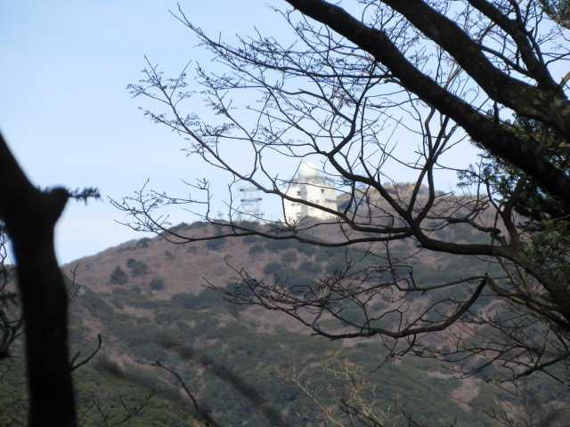 IMG6712JPG樹間に三郡山ドーム