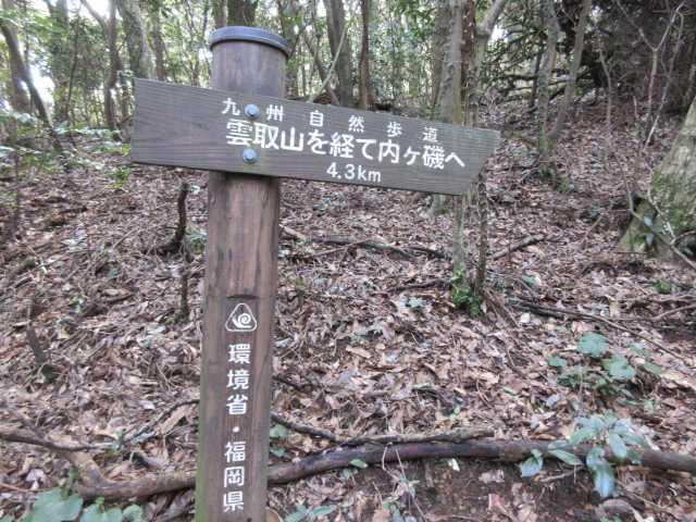 IMG6749JPG雲取山分かれ