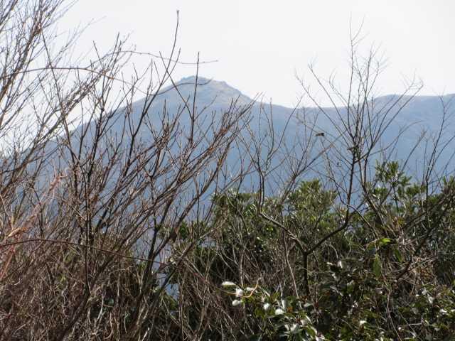IMG6768JPG福智山を望む