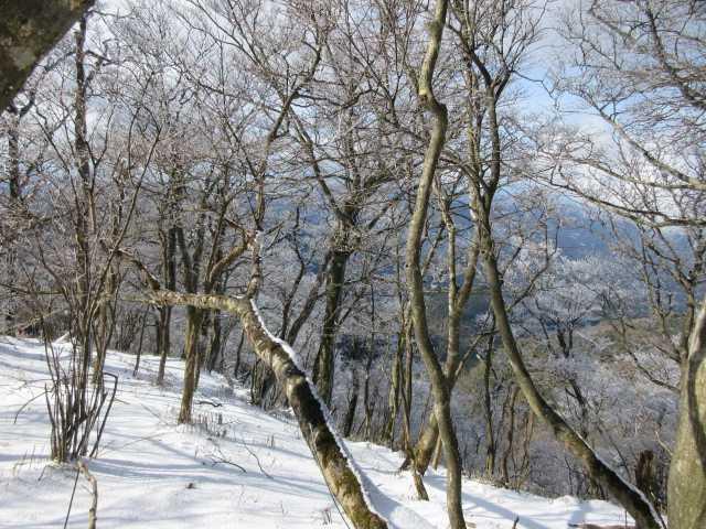 IMG7267JPG南岳の雪原