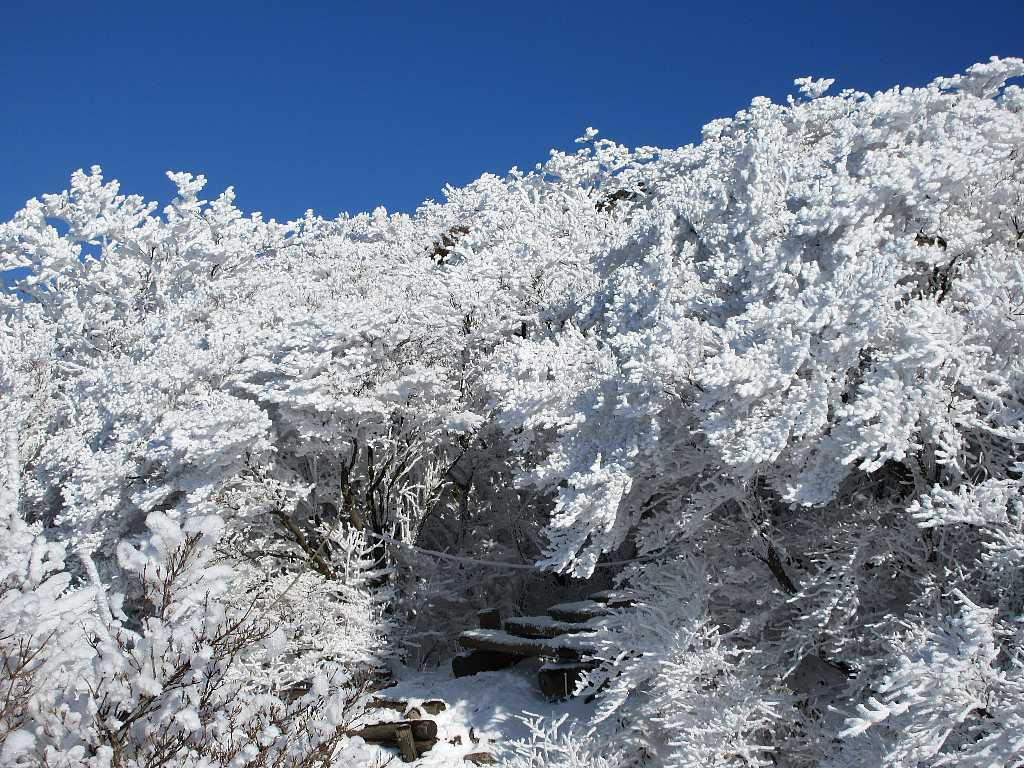 IMG7520JPG気温が低く融雪しない