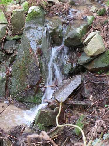 IMG7569JPG小滝