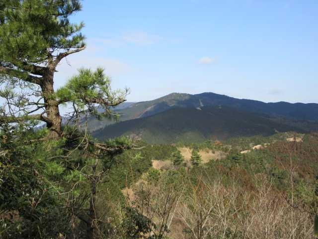 IMG7591JPG福智山への縦走路方面