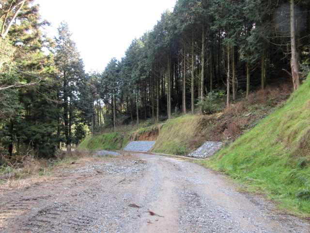 IMG7614JPG大きな林道