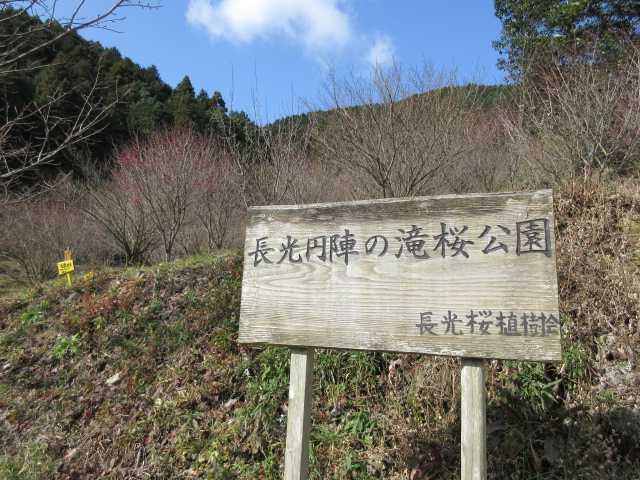 IMG7642JPG舗装道の標識