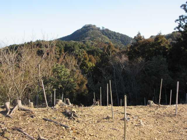IMG7703JPG禿山より笠置山を見る