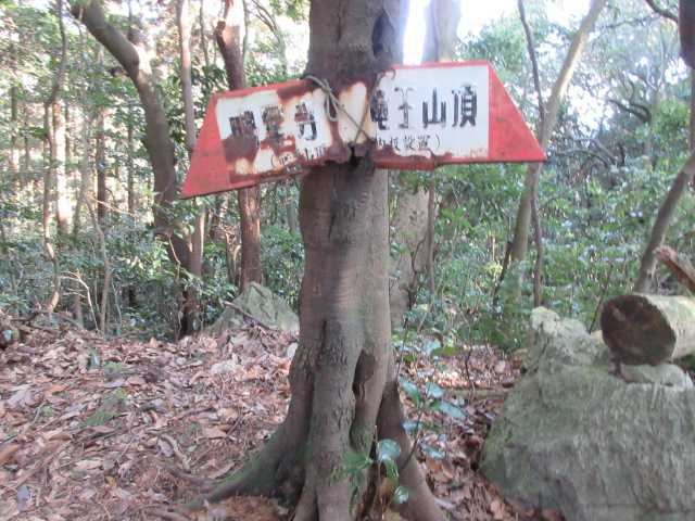 IMG7766JPG竜王神社分岐